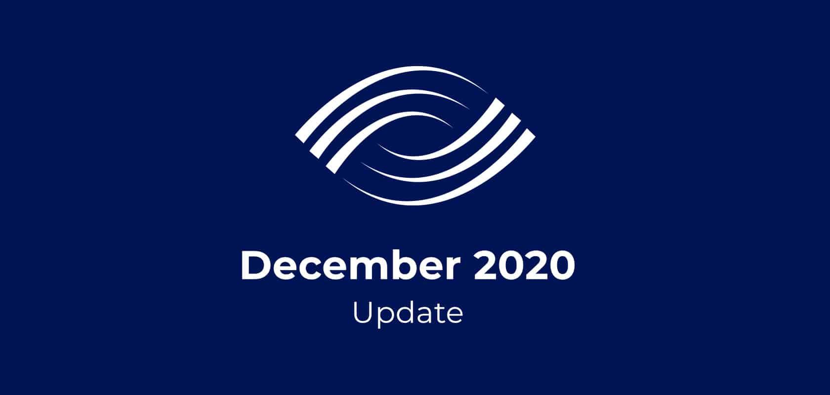 VDM Project Update: December 2020